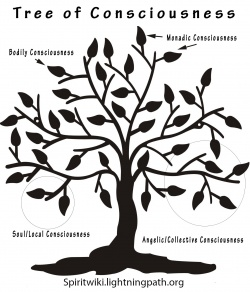 Tree of Consciousness